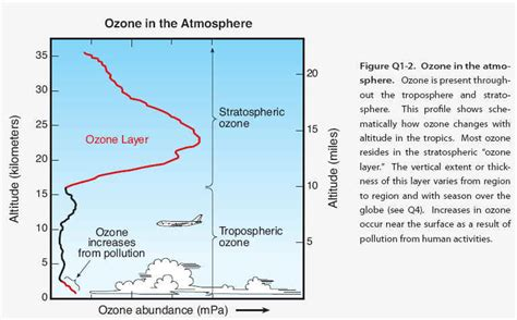 why is ozone an important form of oxygen the ozone hole