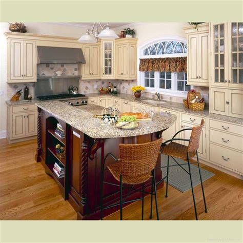 cabinet ideas for kitchens kitchen cabinets ideas decobizz