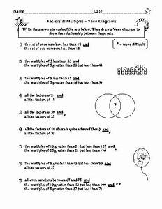 8 Best Images Of Photosynthesis Diagram Worksheet