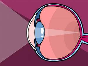Eyes Lesson Plans And Lesson Ideas