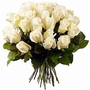 Bouquet Fleurs Blanches : 67 best fleurs blanches images on pinterest ~ Premium-room.com Idées de Décoration