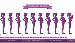 Top pregnancy tips by trimester - NowBaby.co.uk