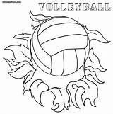 Volleyball Coloring Pages Court Drawing Print Colorings Getdrawings Coloringway sketch template