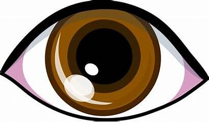 Eyes Cartoon Clipart Brown Clipartix
