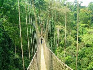 Canopy Walk at Kakum Park, Central Ghana | One at a time ...
