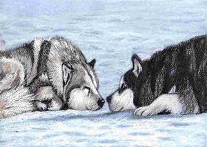 eight below dogs names - DriverLayer Search Engine