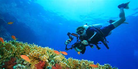 beginners guide  underwater photography equipment