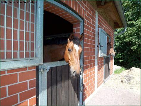 pin pferd im stall zum ausmalen stute  pinterest
