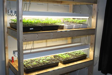 seed starter grow lights how to build an indoor seed starting rack cheap old