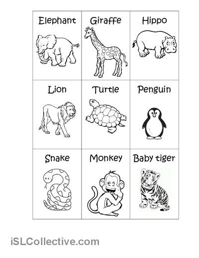 6 best images of printable zoo worksheets animals zoo
