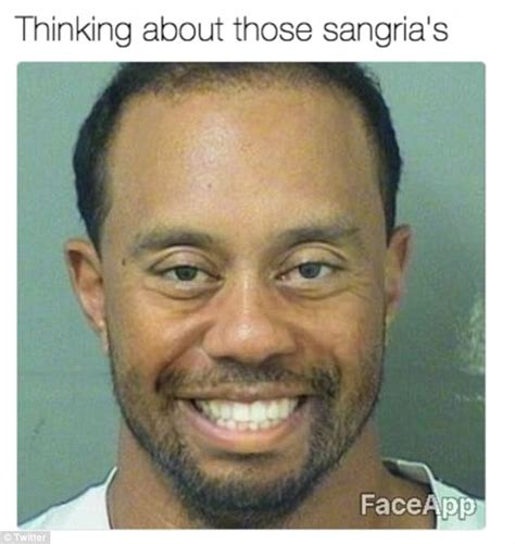 Tiger Woods Meme Tiger Woods Mugshot Gets The Meme Treatment Daily Mail