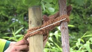 Baum Pflanzen Anleitung : baum pflanzen schley 39 s blumenparadies ratingen youtube ~ Frokenaadalensverden.com Haus und Dekorationen