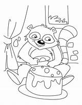 Raccoon Coloring Racoon Birthday Celebrating Drawing Clipart Library Popular Getdrawings Coloringhome sketch template