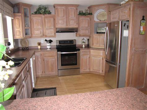 Organize Everything   Under the Kitchen Sink   Clean and
