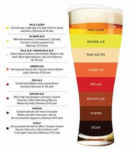Beer  The Basics