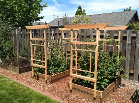 Trellis For Raspberries  By Lboy @ Lumberjockscom