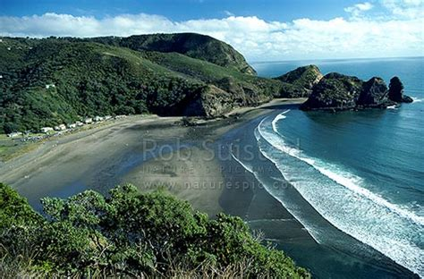 Looking South From Lion Rock Piha Beach Piha Beach