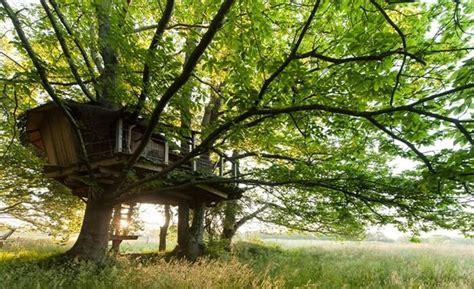 chambre d hote et spa cabane dans les arbres bretagne cabane perchée morbihan