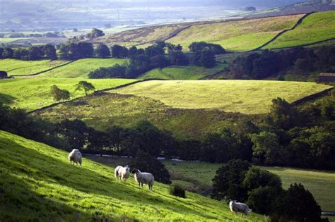 Yorkshire Day: 10 reasons Yorkshire is the absolute worst ...