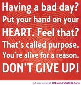 Funny Quotes About Having A Bad Day. QuotesGram