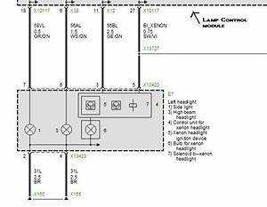 Wiring Diagram  2001 Bmw X5 Tail Light Harness
