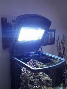 Sera Led Beleuchtung : aquarium von kingtritonbs 26436 sera marin led 130 ~ Eleganceandgraceweddings.com Haus und Dekorationen