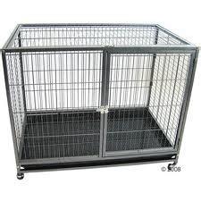 recherche cage d int 233 rieur tabby caisses de transport