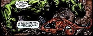 Have Spider-Man and The Hulk ever fought in the comics ...