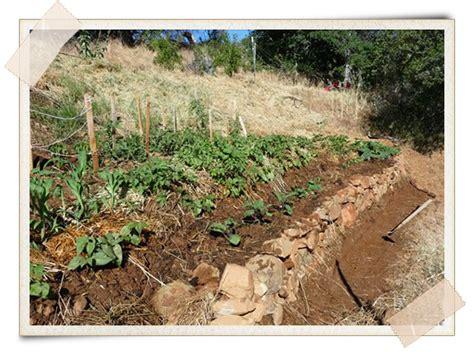 Hugelkultur Raised Beds by Hugelkultur The Composting Raised Beds A Growing Culture