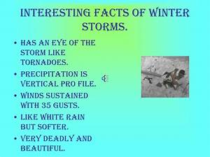 PPT Wild Blowing Snow Storms PowerPoint Presentation