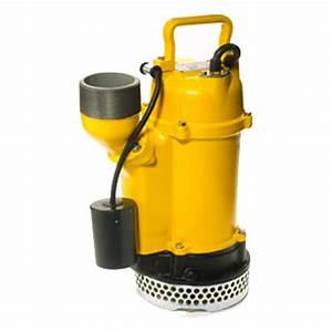 Pompe à Eau électrique : pompe submersible 3 location lou tec ~ Medecine-chirurgie-esthetiques.com Avis de Voitures