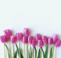 Wann Blühen Krokusse : welche fr hlingsblumen bl hen wann ~ Eleganceandgraceweddings.com Haus und Dekorationen