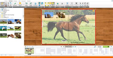 fotobuch ein pferdefotobuch mit eigenen fotos gestalten