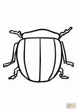 Bug Potato Coloring Beetle Colorado Supercoloring Printable Template Templates Categories sketch template