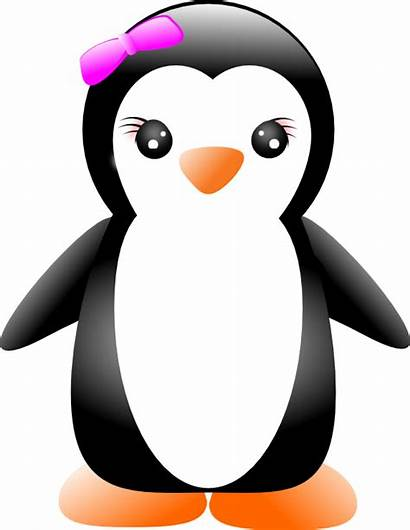 Penguin Penguins Girly Clip Graphics Notation Comparing