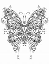 Coloring Butterfly Adult Adults sketch template