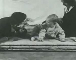 Terrifying Fluffy Bunnies and The Little Albert Experiment
