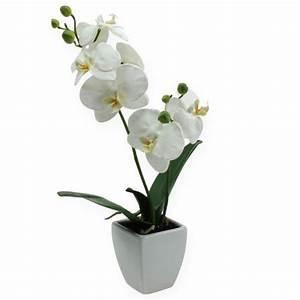 Künstliche Orchideen Im Topf : deko orchidee im topf wei 40cm einkaufen in sterreich ~ Watch28wear.com Haus und Dekorationen