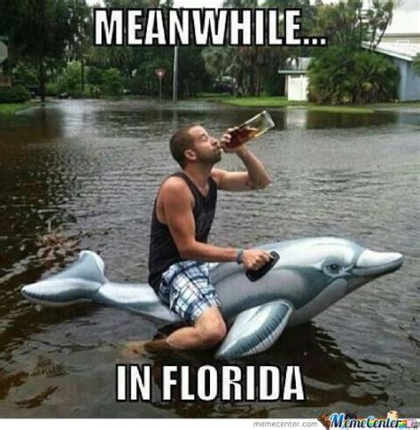 Florida Rain Meme - meanwhile in florida by lowblow meme center