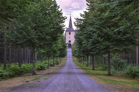 Lielāko Latvijas mežu īpašnieku TOP 100 - Puaro.lv