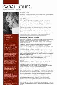 senior executive resume samples visualcv resume samples With sample resume for executive assistant to senior executive