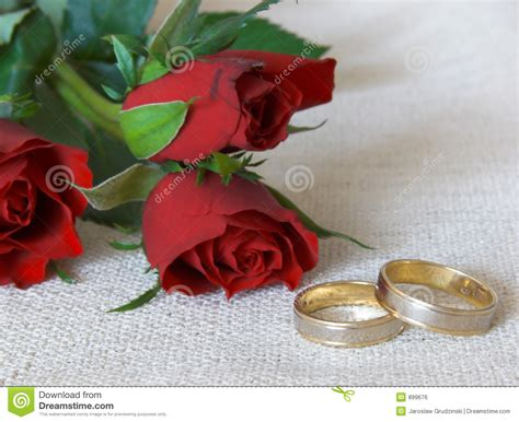 wedding rings and roses royalty free stock image image