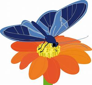 Clipart - butterfly on a flower