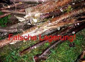Holz Lagern Im Freien : brennholz lagern stapeln und trocknen diy abc ~ Whattoseeinmadrid.com Haus und Dekorationen