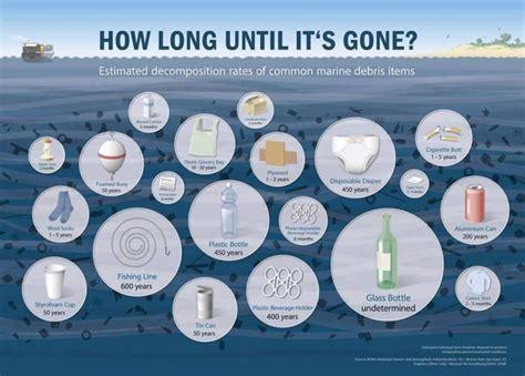 microplastics   ocean  killing baby fish study