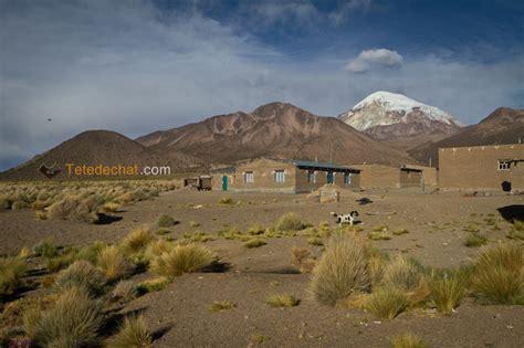 Le Parc national Sajama Bolivie voyage TetedeChat com