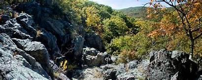Sauk Trail Taum Ozark Ozarktrail Section Adopt