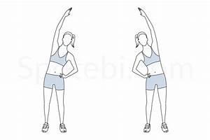 Obliques Stretch