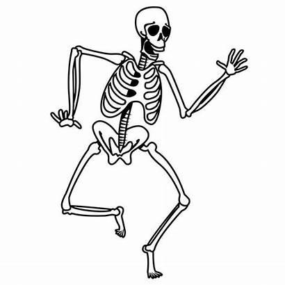Skeleton Coloring Drawing Simple Pages Shuffling Drawings