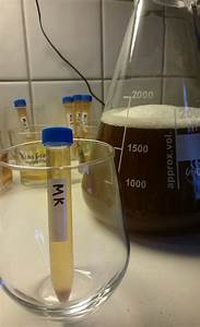 American Wild Ale Mixed Fermentation Sour Beer Beer